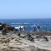 Ocean Cove Camping June 2020-1
