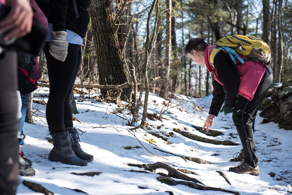 . (01/21/18 PRINCETON MA) Naturalist with the Massachusetts Audubon Society Clair Degutis investigates animal tracks during a nature walk on Sunday at the Wachusett Meadow Wildlife Sanctuary in Princeton.  SENTINEL & ENTERPRISE JEFF PORTER