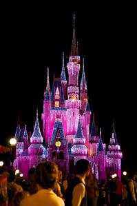 Disney 2010-11-21  326