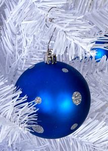 Christmas Detail 04