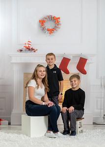 Brick family 05