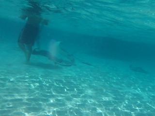 Stingray Videos-pics 082