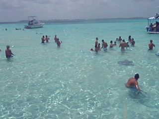 Stingray Videos-pics 117