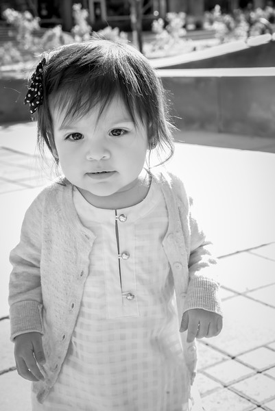2015-11-11 Jessica-Josh - Studio 616 Phoenix Photography-15-2