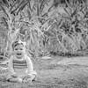 M-D - Family Photography Phoenix - Studio 616-1-2