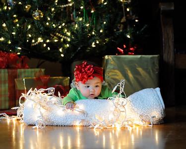 K & P Christmas-120813-055