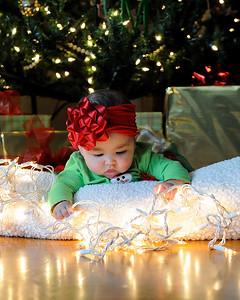 K & P Christmas-120813-064