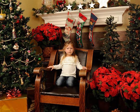 The Neiheiser's Christmas Portraits