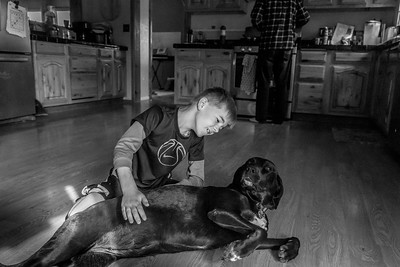 A boy rubs the stomach of his black, Labrador dog, laying on the floor in his kitchen.