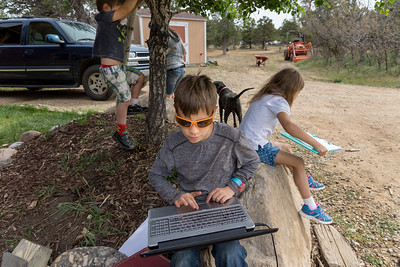 A boy in orange sunglasses works on a laptop while his brother climbs a tree and his sister does her homework behind him