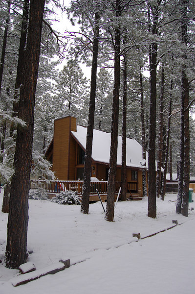 First snow of the season at the cabin.
