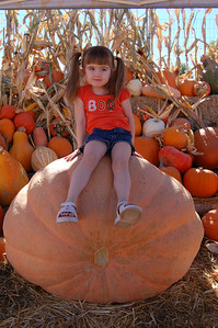 At the pumpkin patch.
