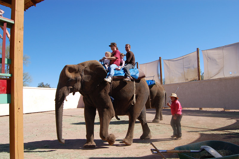 Ainsley and Daddy rode an elephant!
