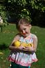 Picking lemons from Grandma's tree for the lemonade.