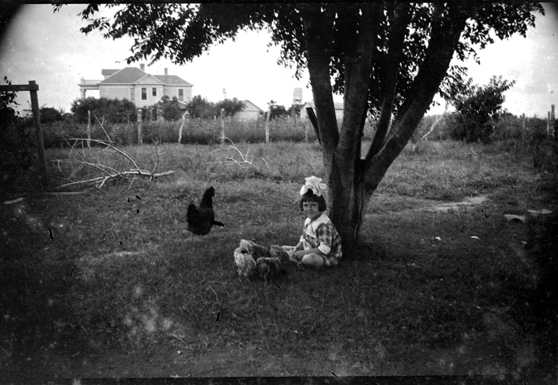 Mom and Chickens, the Moser/Lyne home in the background, one of W.C. Stephenson's first large home designs. Taken on the North Madison homestead yard.