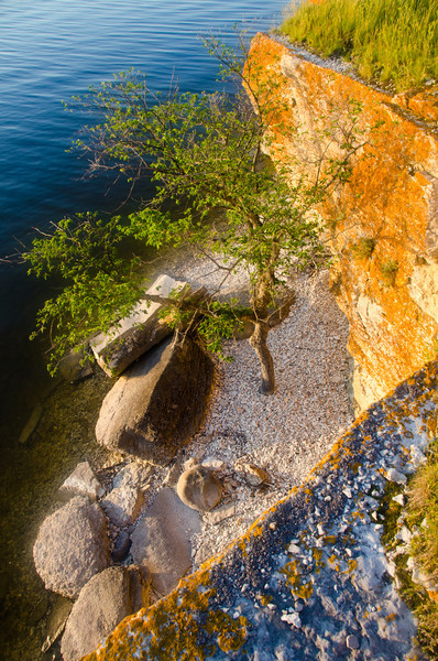 Snake Island, Lake Winnipegosis