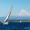 Sailboat on the Columbia River during summer with Mt Hood
