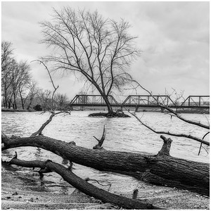 2019 Cedar River - Cedar Falls