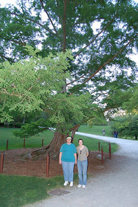Linda & Ellen with a very rare tree in Duke Gardens