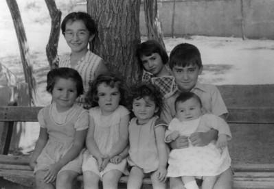 Ankara-Ayrancı, 1955 yazı. Kuzenler.