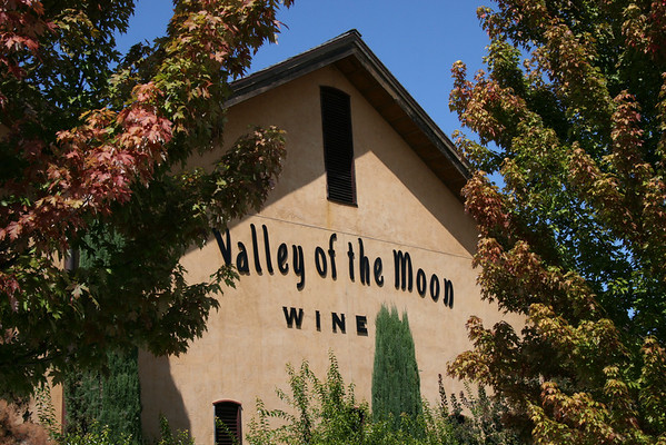 Valley of the Moon Winery (7)