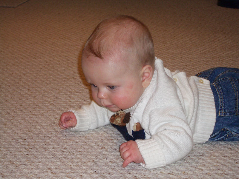 Colin Crawling Soon