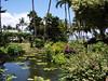 Maui - Hotel Property-Lagoon 2
