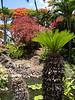 Maui - Hotel Property-Foliage