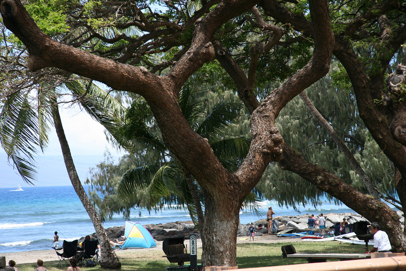 Lahaina Outing (3)