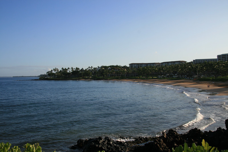 Exploring the coast line in the morning (3)