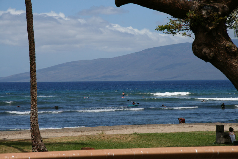 Lahaina Outing (4)