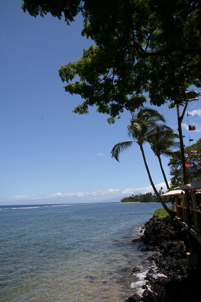 Lahaina Outing (7)