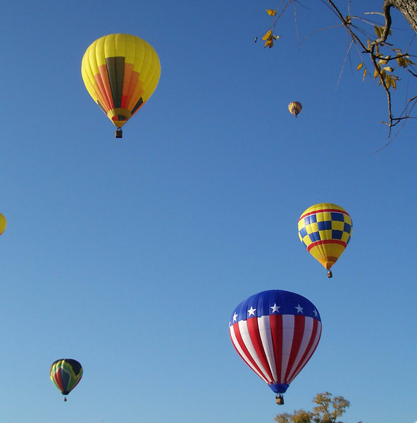 Balloon and Wine Festival 048