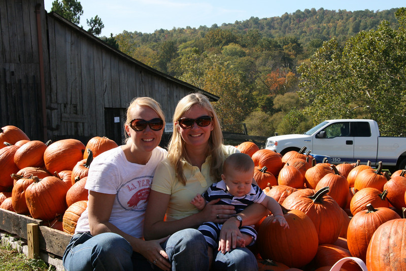 Apple Picking with Auntie Erin (32)