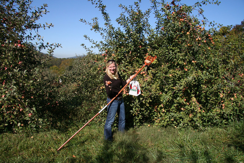 Apple Picking with Auntie Erin (2)