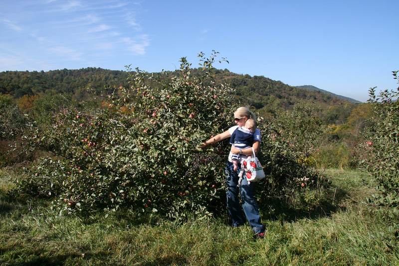 Apple Picking with Auntie Erin (17)
