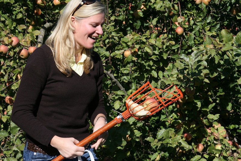 Apple Picking with Auntie Erin (4)