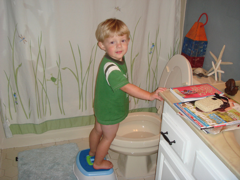 Going Pee Pee in the Potty!
