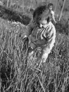 Tire 1948