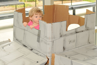 this is a castle made of cardboard