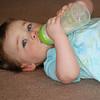 Savannah at home,  <br /> Oakland CA <br /> Aug 10, 2009
