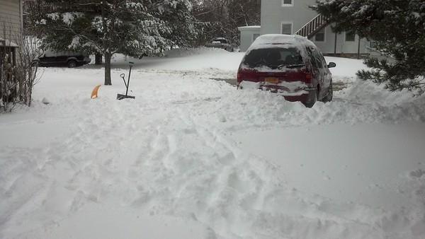 Snow Fun with the neighbors