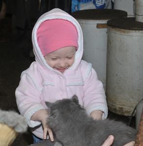 Ella laughing at the kitten :)