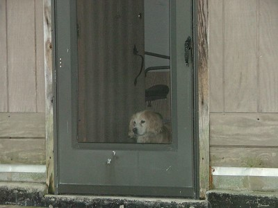 Hannah at the door
