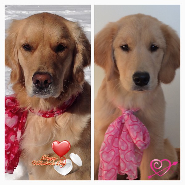Happy Valentine's Day 2016 from two sweet girls!