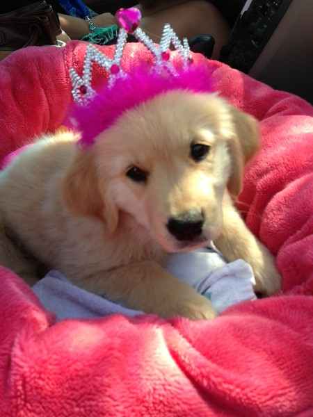 Kaia now as a princess!