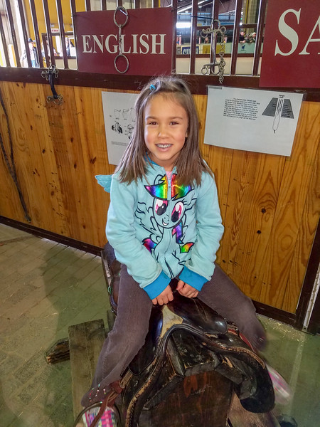 Sitting on saddles at the National Western Stock Show (Trevor's class field trip)
