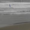 Cape Falcon-11