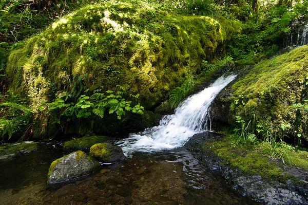 2010-06-16 Eagle Creek-10