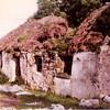 Jack Ward's house, Ballycurra, 1980